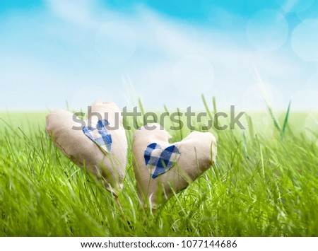 Heart on grass #1077144686