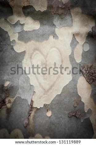 Heart on tree bark.