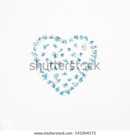 Free photos Frame with dried flowers on white background. autumn ...