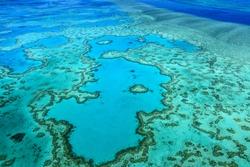 heart reef great barrier reef Whitsundays Queensland