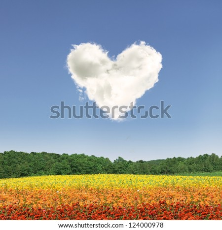Heart shape cloud over colorful flowers during the day