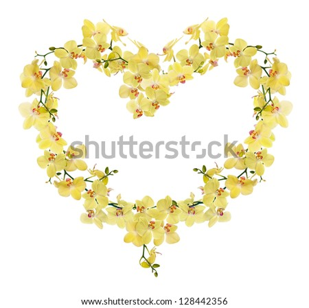 heart shape frame from yellow orchid flowers isolated on white background