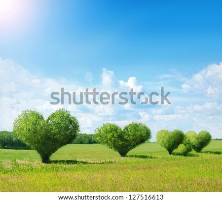 Heart shaped bushes with green field and blue sky