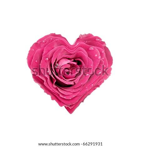 heart shaped rose