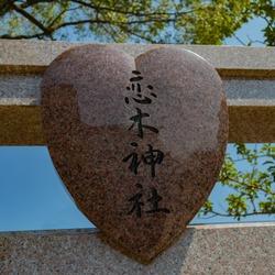 Heart Stone in Temple Japapnese Translation: Love Tree Shinto Shrine