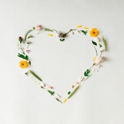 Heart symbol made of various natural things. Love concept. Flat lay.