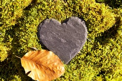 Heart sympathy or funeral heart, Blank slate heart lying in moss. copy space for text. Natural burial grave site, showing blank memorial plaque on grass or moss. tree burial and All Saints Day concept