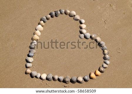 heart with shells