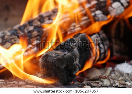 Heat of wood fire #1056207857