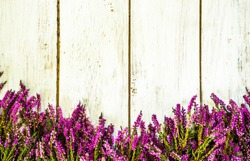 Heather flowers frame on shabby wood background useful as greeting card.