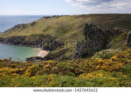 Heathland near Starehole Bay, Devon, England.