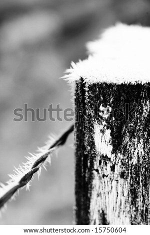 Heavy Frost on Wooden Fence Post and Wire - Black and White Photo