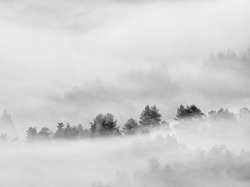 Heavy mist in landscape. Magnificent  autumn creamy fog in countryside. Hill increased from fog, the fog. Black and white photo.