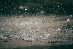 Heavy rain drops on asphalt.