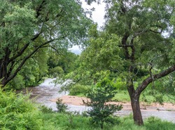 Heavy seasonal rains in February 2020 in the Kruger National Park has caused dry rivers to run again image in horizontal format