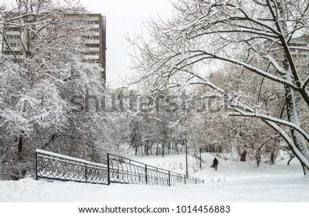 Heavy snow covered trees, streets, houses. #1014456883