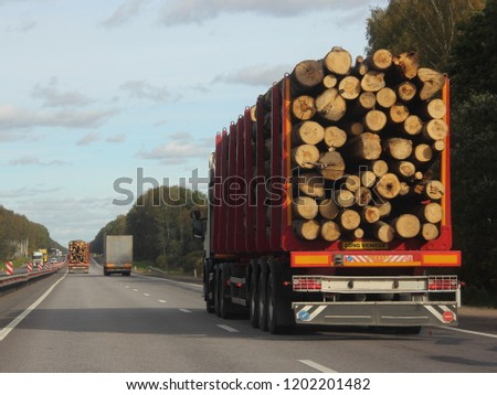 Heavy trucks transports logs on a semi-trailer on a suburban asphalt highway on a summer day against a green forest and blue sky with clouds - commercial timber import in Europe, trading #1202201482