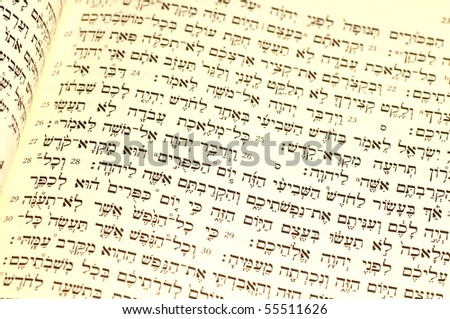 Hebrew Bible passage for Rosh Hashana, with the pertinent section,Leviticus 23:23-26, in sharpest focus