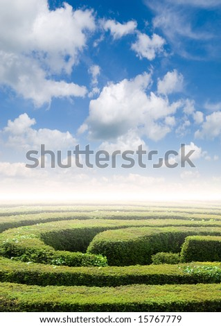 Hedge maze under a summers sky, problem solving concept - stock photo