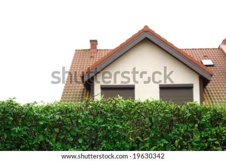 hedgerow in front of modern house. Isolated on white background