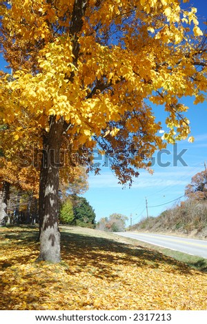 Helens' Fall - stock photo