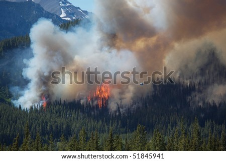 Helicopter approaching large flames from forest fire