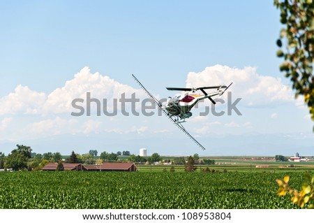 Helicopter crop duster making a turn over a cornfield ready to make another pass with pesticide.