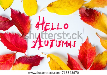 Hello Autumn calligraphy note with fallen leaves on white paper #713343670