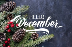 Hello December hand lettering inscription. Spruce branches and cones frame. Great season texture with december and winter mood, traditional beverage for winter time.