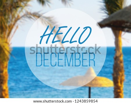 hello december, hot winter in tropical sea
