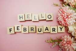 Hello February alphabet letter with space copy on pink background