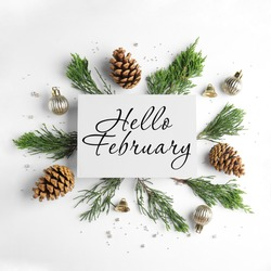 Hello February greeting card, fir tree branches, cones and festive decor on white background, flat lay