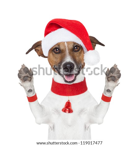 hello goodbye high five christmas  dog with paws up