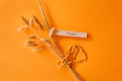 Hello June concept. Orange background. Template for greeting card, text, design. Copy space. Happy June day.