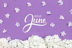 Hello June hand lettering card. Summer flowers on violet background.