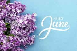 Hello June hand lettering card. Summer lilac flowers on blue background.