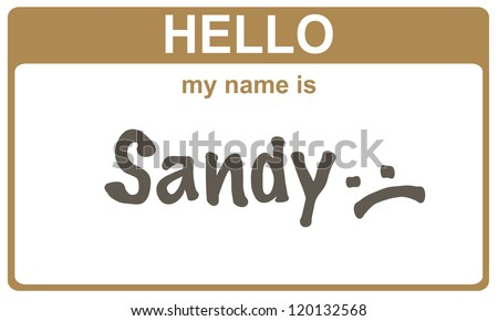 hello my name is sandy  sticker