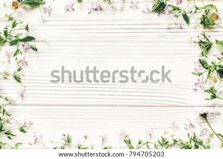 hello spring flat lay. fresh daisy lilac flowers and green herbs frame on white wooden rustic background top view. greeting card. space for text. mock-up. happy mothers day. earth day #794705203