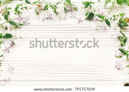 hello spring flat lay. fresh daisy lilac flowers and green herbs frame on white wooden rustic background top view. greeting card. space for text. mock-up. happy mothers day. earth day #795757039