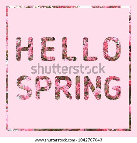 Hello Spring floral text on soft pastel pink background. Blossoming tree backdrop. Spring equinox concept.