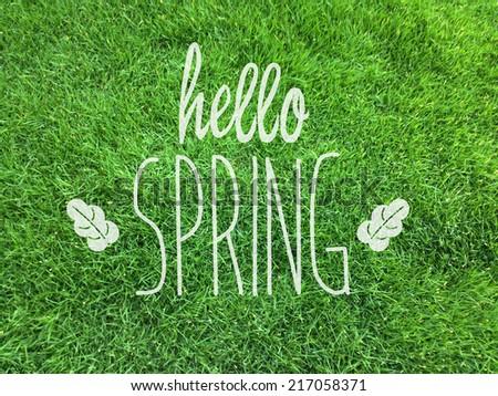 hello spring/spring/grass - Shutterstock ID 217058371