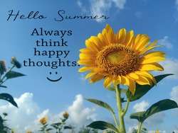 Hello Summer. Always think happy thoughts. Summer inspirational quotes, positive motivational quote with smiling sunflower blossom in field on bright blue sky background.
