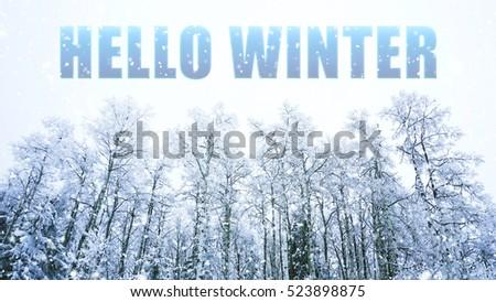 Hello WINTER words on winter background #523898875