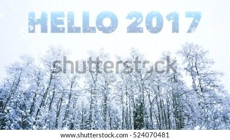 Hello 2017 words on winter background #524070481