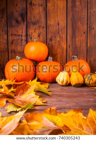 Helloween time orange pumpkins