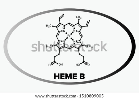 HEME B molecule, skeletal line formula in a oval circle
