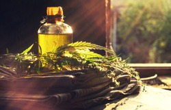 Hemp products concept. Bottle of oil, textile and cannabis plant near the window