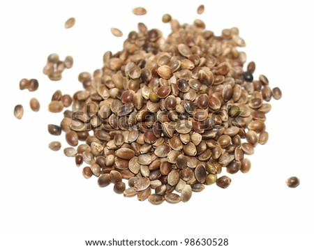 Hempseed isolated on white - stock photo