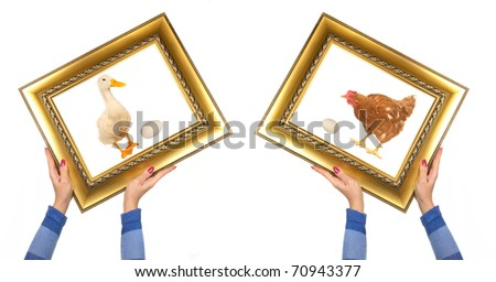 hen and duck a picture frame