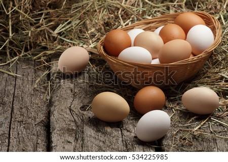 Hen / chicken eggs basket on the hey